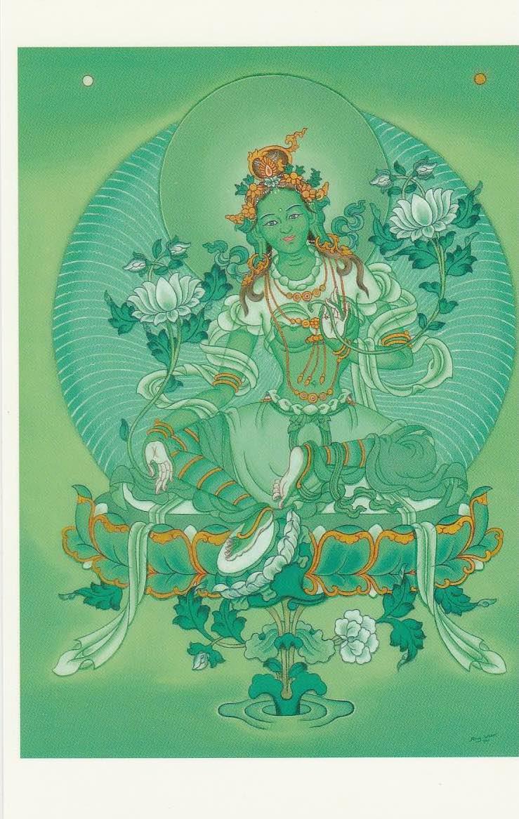 green-tara_20161222_0001