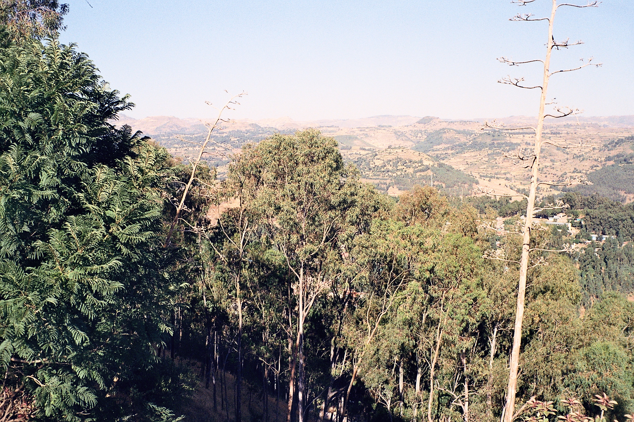 View from Goha